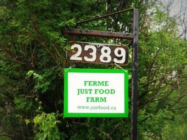 just-food-03