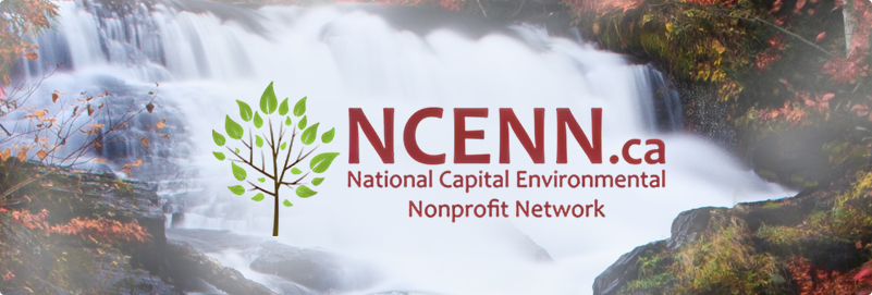 Fall NCENN roundtable for environmental groups & organizations